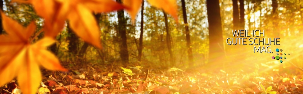 Herbst 2 (1920x600)