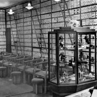 1951, Verkaufsraum Seilwinderstraße