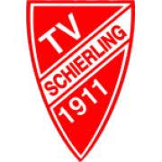 Teamsport des TV Schierling