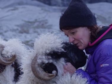 Die Leidenschaft zum Schaf und deren Wolle