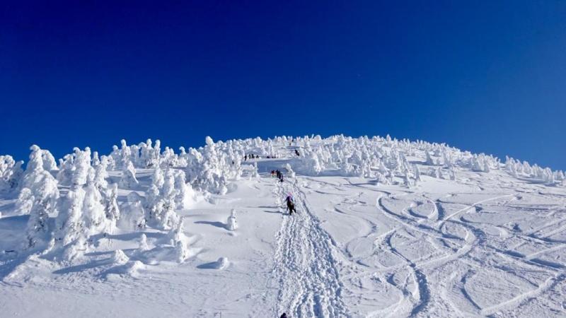 Skitouring für Einsteiger