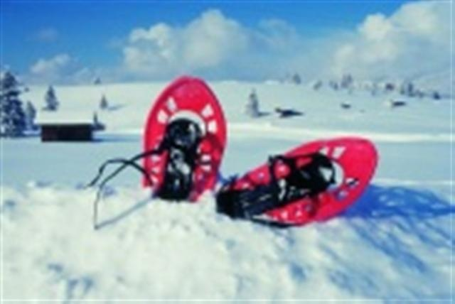 Top Ski / Snowblad / Schneeschuhe / Schlitten u.a.