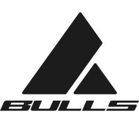 Bulls 2020