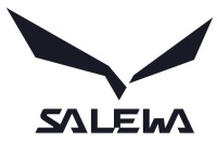 Salewa Alp Flow GTX