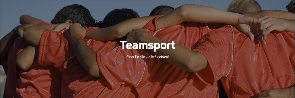 Teamsport Händler