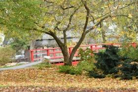 Rote Brücke Kurpark
