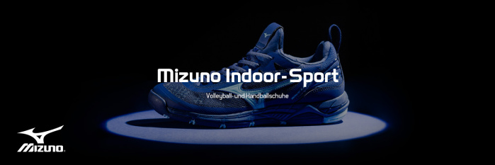 Mizuno Indoor Sportschuhe