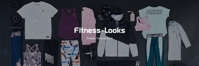 Fitness-Looks FS 19