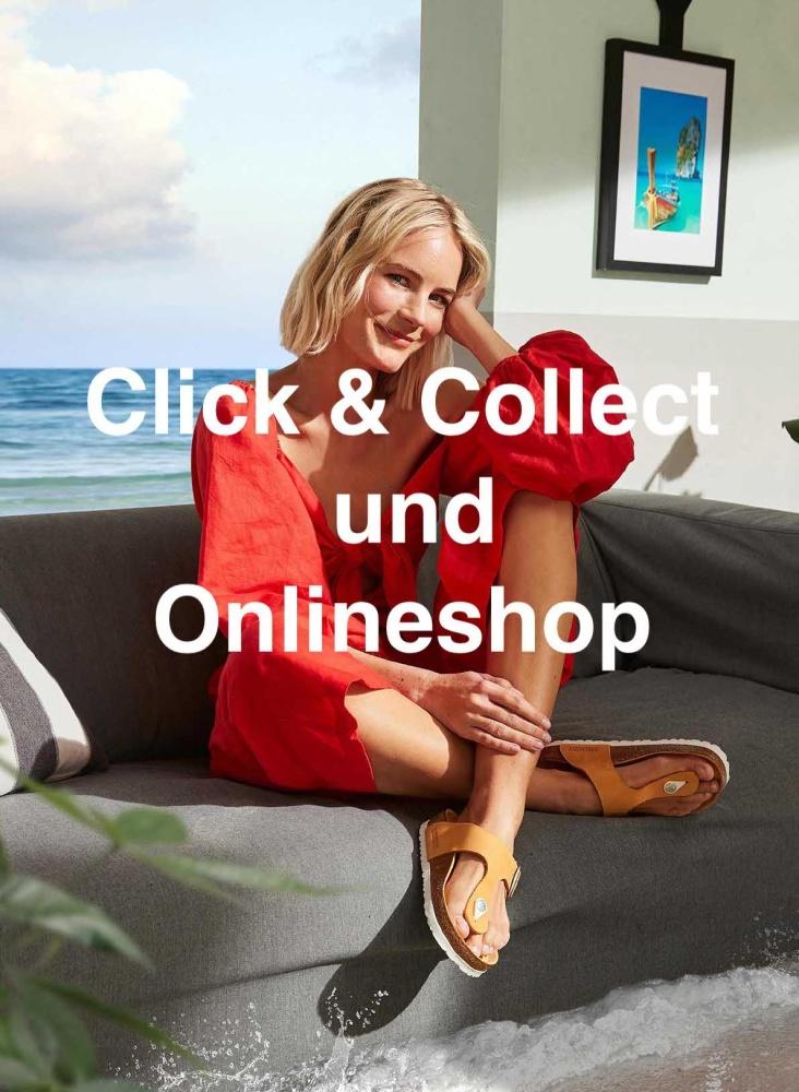 onlineshop Sommer