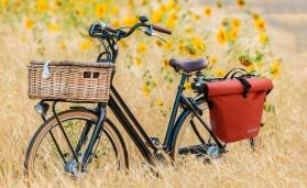 Travelite Basics Fahrradtasche rot und schwarz