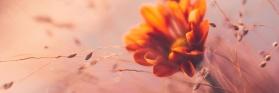 Saisonmotiv_herbst21_stimmungsmotiv