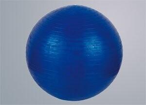 V3TecGymn. Ball 55 cm